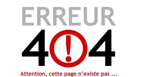 rediréger les erreurs 404 vers la page d'accueil wordpress