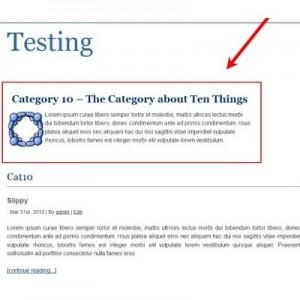 Afficher la description des catégories dans les archives WordPress