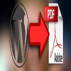 CONVERT6ARTICLE6TO6PDF
