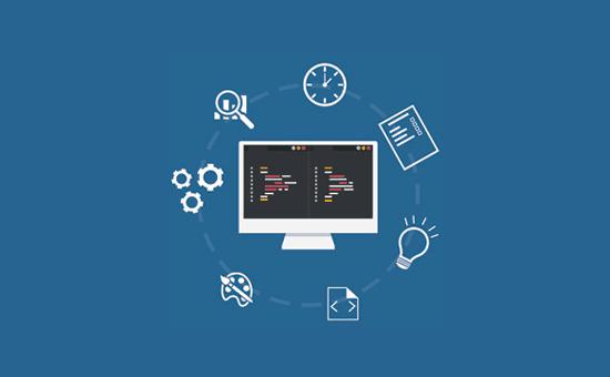 Utiliser un plugin ou Functions.php dans WordPress