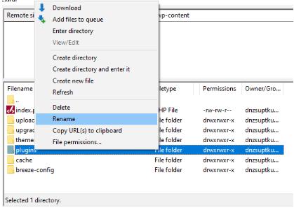 renommer dossier plugin